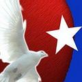 20110507235139-bandera-paz.jpg