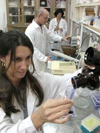 20110719164117-cientificos-cuba.jpg