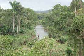 Manicaragua, sede en Villa Clara por el Día Mundial del Medio Ambiente
